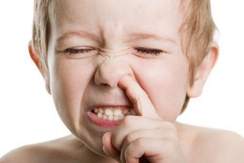 Папиллома в носу на перегородке, на носу: медикаментозная терапия, удаление