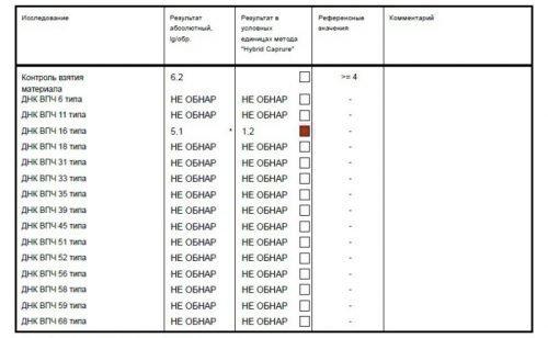 Расшифровка анализа на ВПЧ