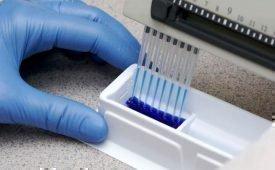 Какие анализы проводятся на определение ВПЧ?