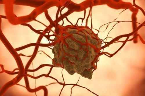 Вирус ВПЧ в крови