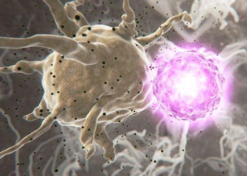 Вирусы и инфекции
