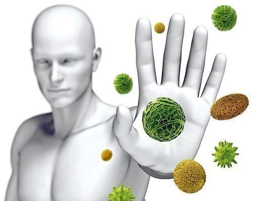 Здоровый иммунитет