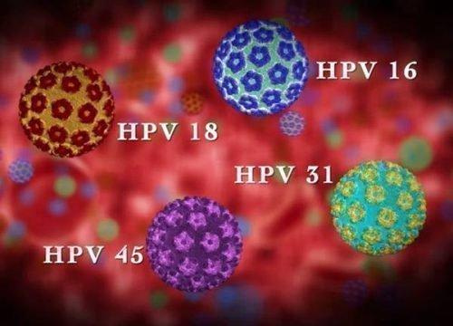 Штаммы вируса папилломы